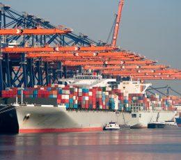 Україна утримує лідерство в Чорноморському регіоні з перевалки контейнерів