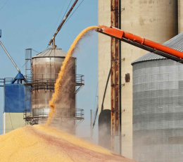 Since the beginning of the season, Ukraine has increased grain exports to 32.3 million tons